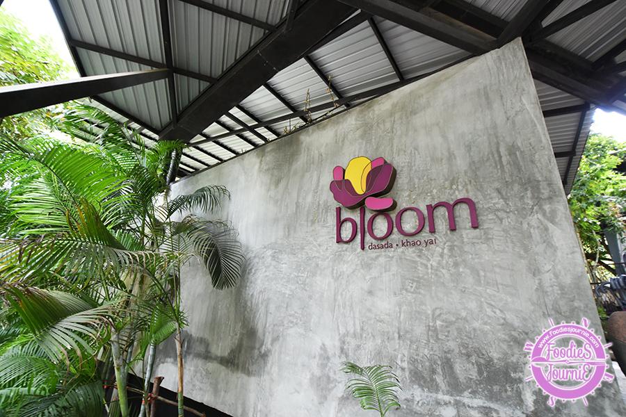 Dasada 17 Bloom